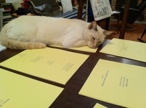 Pancake the cat helping to collate
